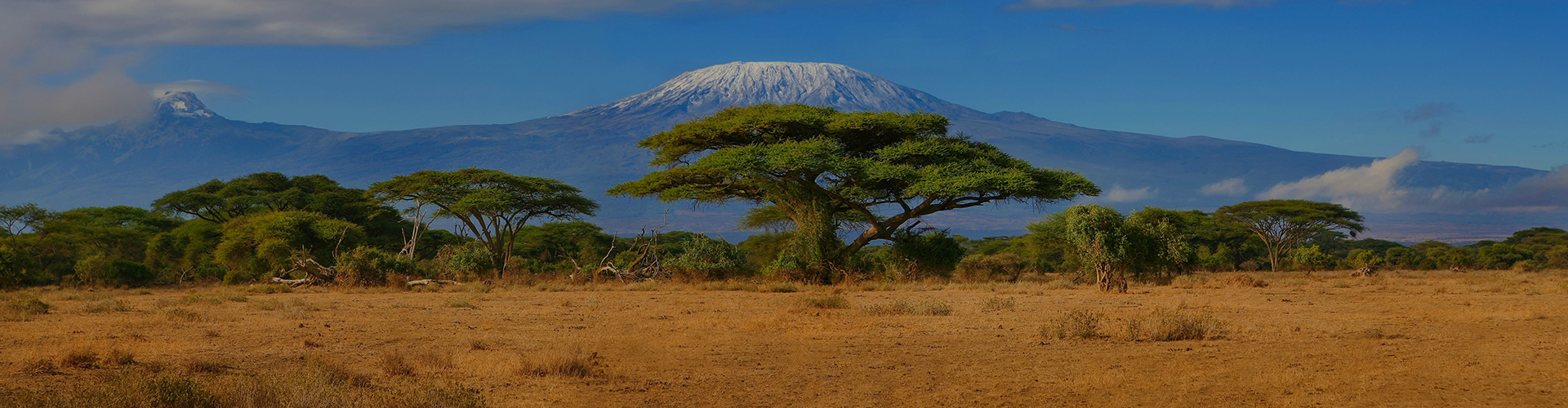 Landmark photograph of Tanzania