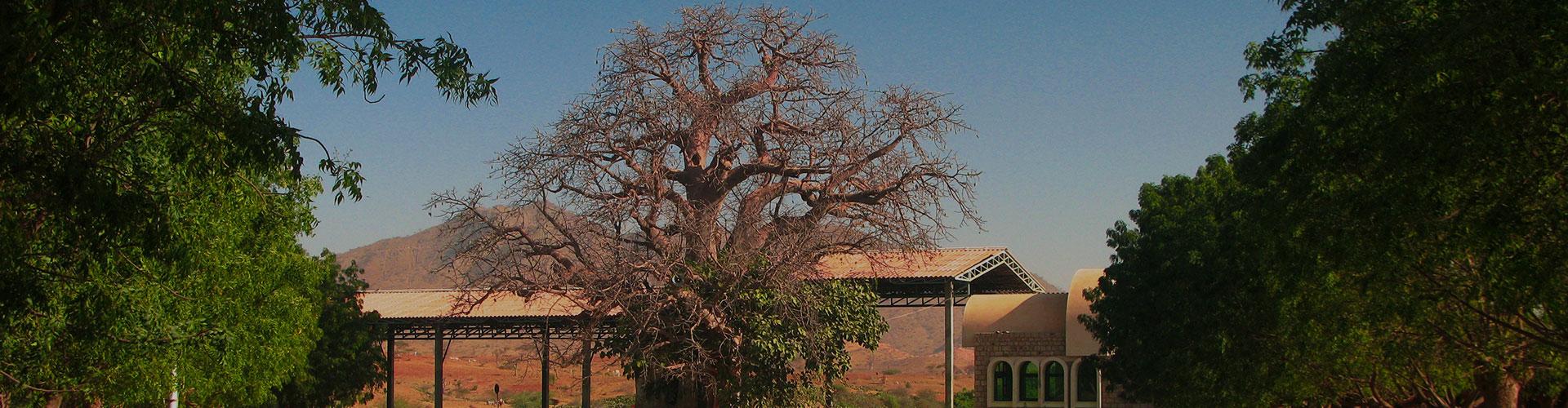 Landmark photograph of Eritrea