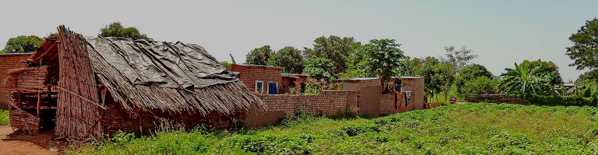 Landmark photograph of Chad