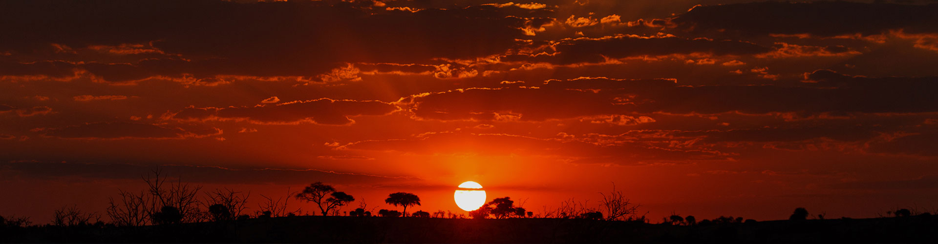 Landmark photograph of Botswana